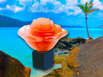 rose image V2